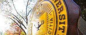 CMU seal in sun